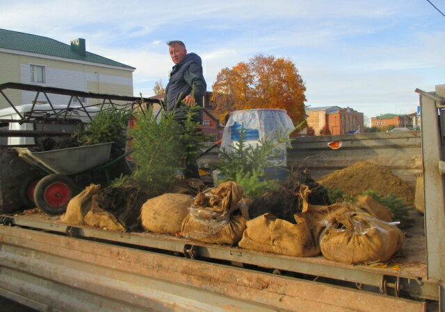 День посадки леса — Буинск
