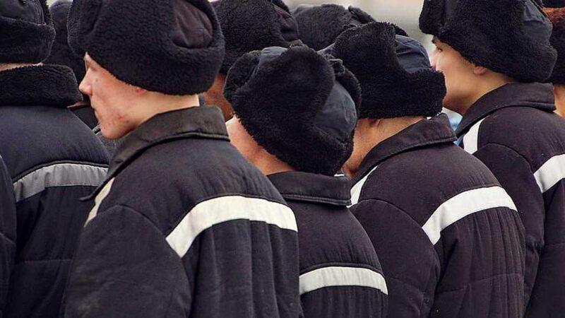 Глава Минюста поддержал идею заменить трудовых мигрантов заключенными